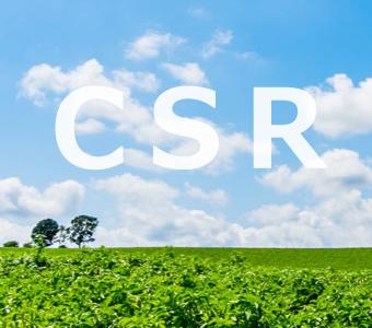社会貢献活動 CSR
